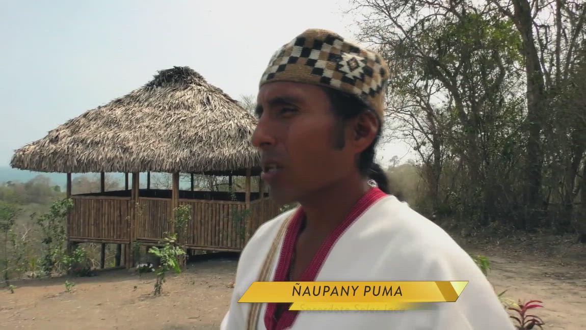 Ñaupany Puma, Sacerdote Solar Inca