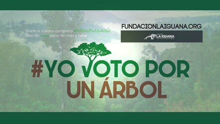 Yo Voto por un Árbol